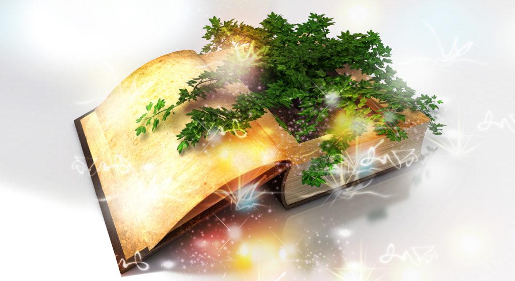 Zauberformel Botanisches Buch